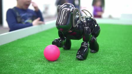 экспозиция : robot in the form of a dog playing with a ball