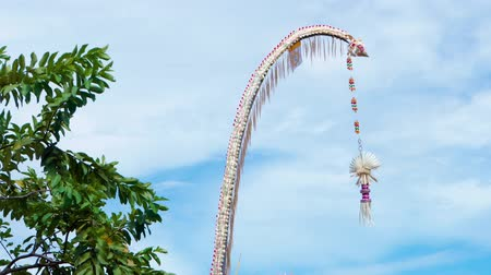 adorno : A traditional strawy decoration of Balinese hinduism waving in wind with palm trees in the background Vídeos