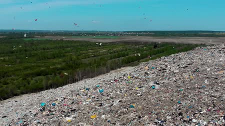 оставаться : The wind picks up in the air and circling plastic bags and other debris on the landfill on a background of green forests and blue sky