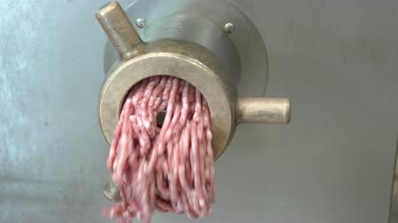 Working modern stainless steel meat-grinder
