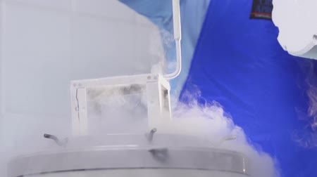 Nitrogen bank of stem cells slow motion