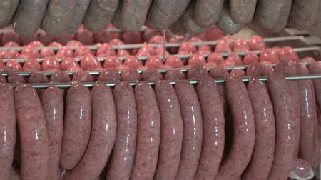 cielęcina : Sausage hanging in the warehouse