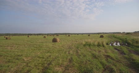 palheiro : Field of large hay bales, low flying aerial