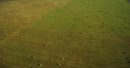 enrolado : Huge field with hay bales, aerial the rising up Stock Footage