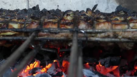 gourmet : Cooking kebabs on the grill and on the coals. Smoke over the meat and the coals become red. Stock Footage