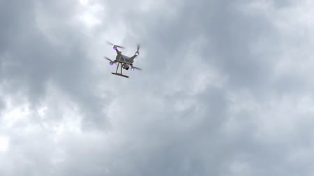 manges : Quadcopter Flying in the Park Between the Trees. the Action in Slow Motion.