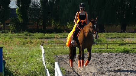 koňmo : Girl Learns to Ride a Horse in a Special Cage. the Action in Slow Motion.