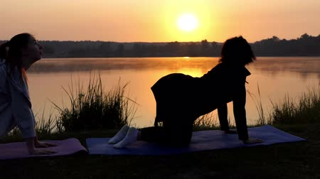 flexure : Two Young Women Stand on All Fours And Train Breathing on a Lake Bank at Sunset Stock Footage
