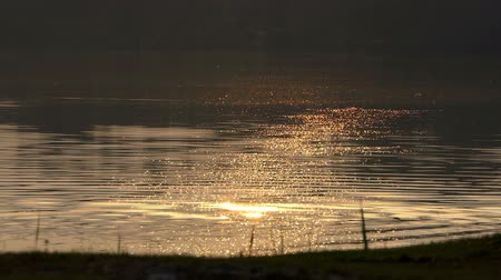 splendid : A lake covered with a lot of golden spots at sunset