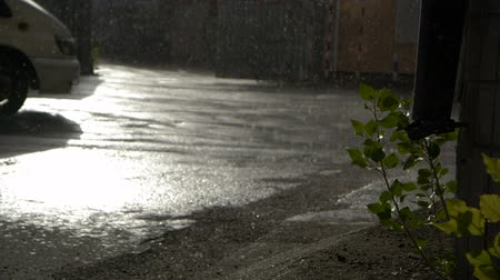 mysticism : Truck rides in rainy weather in slow motion Stock Footage