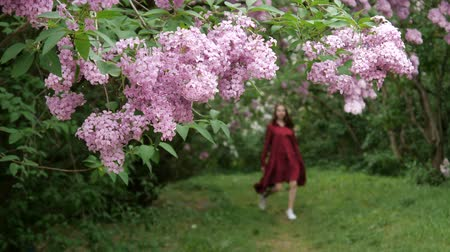 recreational park : Slender girl in a loose dress walks joyfully through the garden