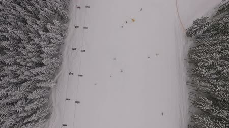 snow covered spruce : View from the sky in the ski resort.