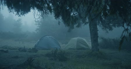травянистый : Horror look in the forest - Two spherical tents in a grassy lawn in a forest Стоковые видеозаписи