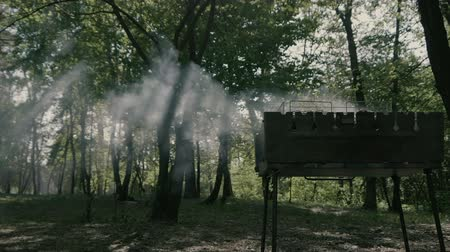 briquettes : Smoke from bbq in slow motion.