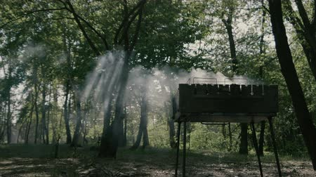 briquettes : Amazing slow motion in the forest - smoke from bbq and daylight.