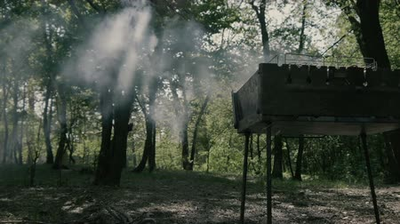 briquettes : Amazing slow motion in the forest - smoke from bbq.