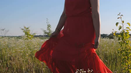 florido : Slender woman in a red dress hiking in a flowery field in summer in slo-mo Stock Footage