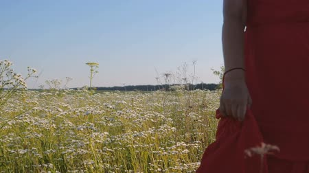 florido : Noble woman in a red dress walking along a flowery field in summer in slo-mo