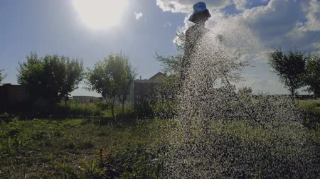 tryska : Eager woman in panama watering her garden area from a shower nozzle in slo-mo