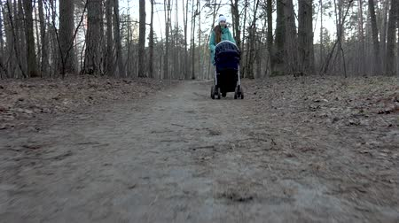carrozzina : Mother walk with stroller in the forest.