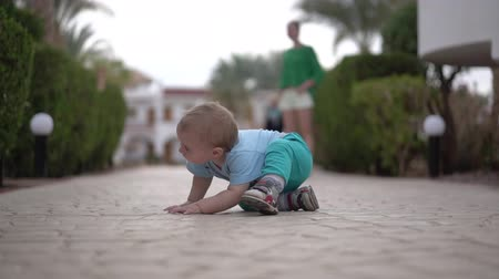 haunches : The baby is sitting on the pavement and looking under the bush - funny action. Stock Footage