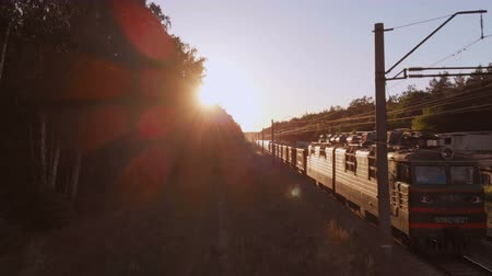 frondoso : Modern train transporting cargo wagons with coal in forest at sunset in slo-mo
