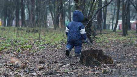 squirrel fur : Little boy in warm jumpsuit walks on the forest and try catch the red squirrel