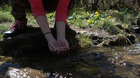 생기 : Female hands take handfulls of water from a stream in the Carpathians in slo-mo