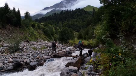 four legs : Four tourists crossing a small wooden bridge over a mountain stream