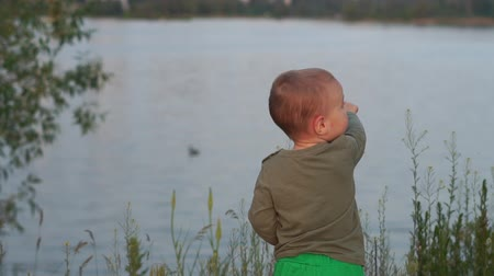 sağlam : Cheery blond kid standing and pointing at a duck in a lake at sunset in slo-mo Stok Video
