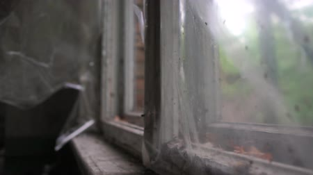 chernobyl : Shabby broken window with stripes of plastic waving slowly in summer in slo-mo