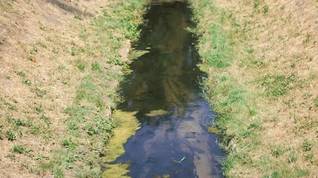 drain : A dirty little stream flows in the city