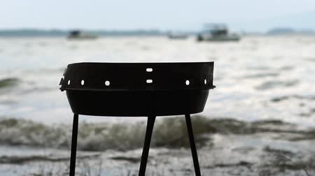 кемпинг : Empty barbecue on the lake near the trees during a storm Стоковые видеозаписи