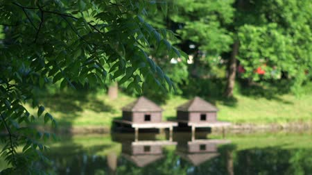 Tree branches sway in the park against the background of two wooden houses for ducks. Dostupné videozáznamy