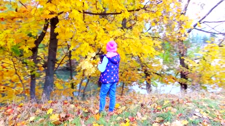 plucks : autumn child plucks the leaves Stock Footage