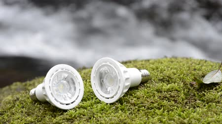 economical : Two LED light bulbs on a green moss in front of brook