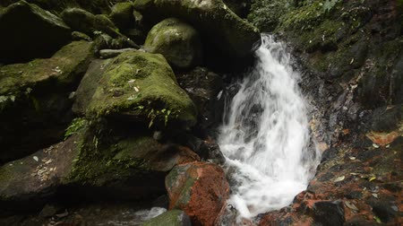 Fast brook flowing on rock slope beside piled mossy stones in Kagoshima