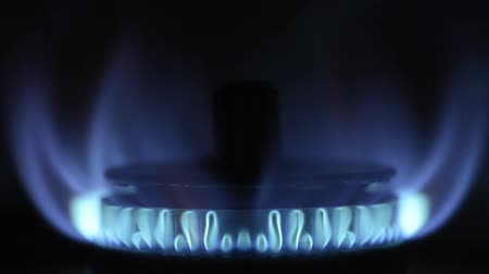 cooktop : Gas stove with blue flame in front of dark background