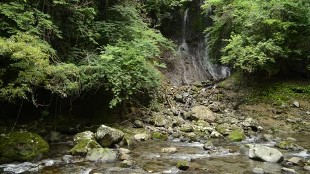 Thin waterfall that flows into a stony stream in green forest