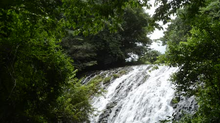 Shallow waterfall flowing down rocky slope which surrounded by deep green forest