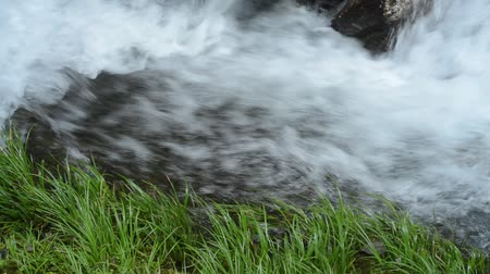 Fast white brook stream side of green glasses Stock Footage
