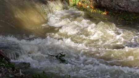 overfill : Muddy River in Flood after Torrential Rain, Flooding by Rain, Storm, Stormy, Flooded Stream, Flowing Water Calamity Close up