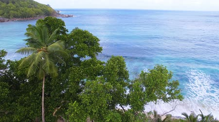 takamaka : Aerial View Of Ocean And Palms 2, Anse Takamaka Bay 3, Seychelles Stock Footage