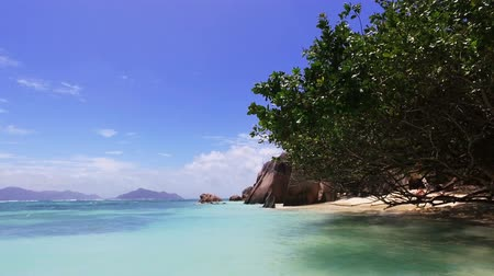 View Of The Ocean And Tree On A Luxury Beach, La Digue Seychelles 2
