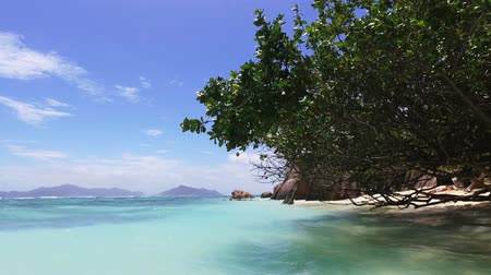View Of The Ocean And Tree On A Luxury Beach, La Digue Seychelles 1