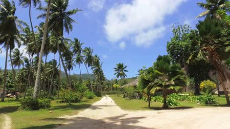 View Of the Palm Trees And Small Hut On Exotic Island, La Digue, Seychelles