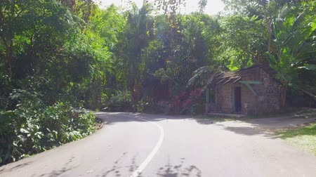mahe : Walking On The Road Of Mahe Island, Seychelles 2 Stock Footage