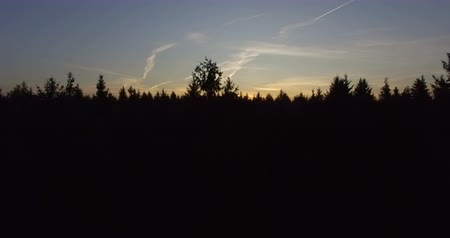 deep autumn : Aerial Drone Footage sunset in the forest