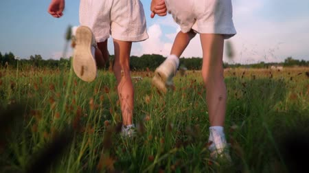 ailelerin : children play and laugh running around the field in summer Stok Video