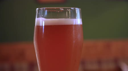 pint glass : Fresh lager beer in the pub Stock Footage